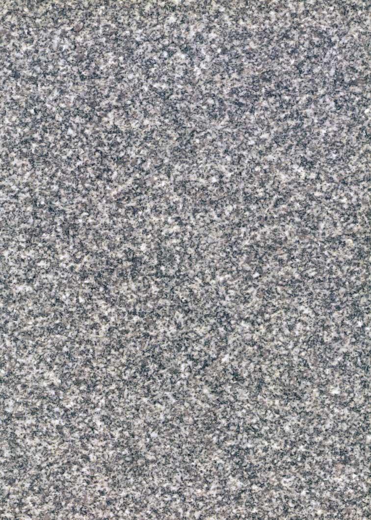 Barre Gray Granite : Stone